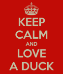 keep-calm-and-love-a-duck-5